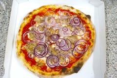 薄饼金枪鱼和葱意大利食物薄饼,火腿采蘑菇橄榄 库存图片