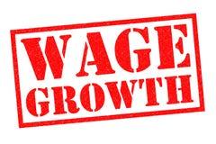 薪水成长 免版税库存照片
