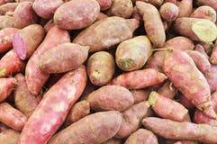 薯类 库存图片