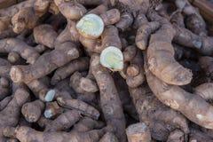 薯类堆  免版税库存图片