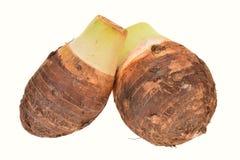 薯类根 库存图片
