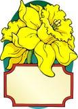 藏书标签黄水仙 库存例证