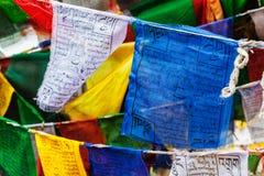 藏传佛教祷告下垂lungta 免版税图库摄影