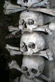 藏有古代遗骨的洞穴头骨 免版税库存图片
