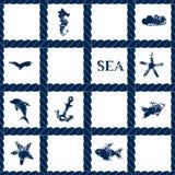 藏青色在白色几何无缝的样式与难看的东西海标志-鱼,海豚,船锚,海星,传染媒介的绳索格子 向量例证