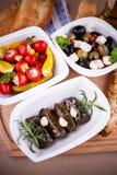 藤叶子充塞用胡椒和地中海开胃小菜 免版税库存图片