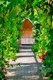 藤和玫瑰遮蔽的庭院格子走道隐藏处暗藏的平静坐的长凳区域户外空 库存照片