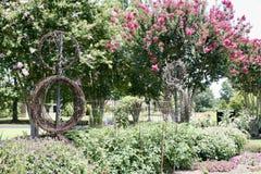 藤和花在一个庭院里在西方田纳西农业研究中心 库存照片