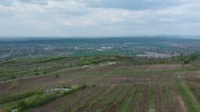 藤在普洛耶什蒂,罗马尼亚,空中英尺长度附近耕种面积 股票录像