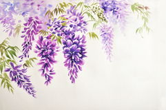 紫藤开花 向量例证