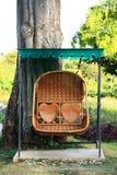 藤条摇摆长凳在庭院里 库存图片