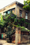 藤缠绕的老砖房子 免版税库存图片