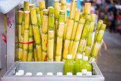藤茎和新鲜的甘蔗汁在瓶 库存图片