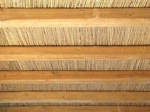 藤茎屋顶模式 库存图片