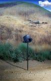藤茎帽子顶层 库存照片