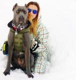 藤茎corso大型猛犬和少妇冬天下雪 图库摄影