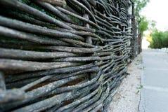 藤,分支,树篱柳条篱芭,反对石和绿色灌木小径背景  库存照片