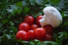 蘑菇、樱桃和荷兰芹 库存图片