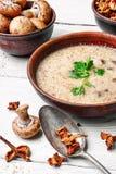 蘑菇乳脂状的汤 库存照片