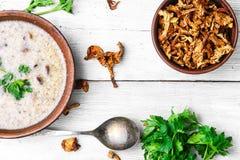 蘑菇乳脂状的汤 免版税库存图片