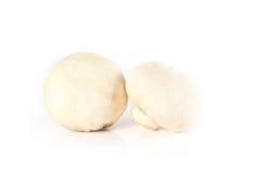 蘑菇和未加工的蘑菇在白色背景 库存图片