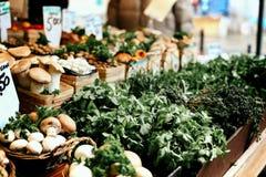 蘑菇和草本篮子在农夫市场上在蒙特利尔魁北克 免版税库存照片