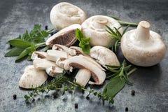 蘑菇和草本食物背景 免版税库存照片