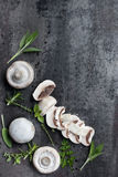 蘑菇和草本食物背景 库存图片