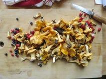 黄蘑菇和莓果 免版税库存照片