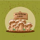 蘑菇土地 库存照片