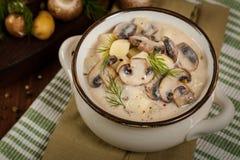 蘑菇土豆汤 库存图片