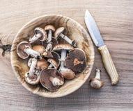 蘑菇在木桌上的碗采蘑菇 免版税图库摄影