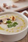 蘑菇奶油色汤 免版税库存照片