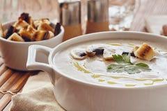 蘑菇奶油色汤 免版税库存图片
