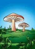 蘑菇屋顶 库存照片