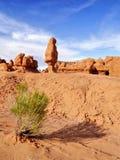 蘑菇岩石和异常的砂岩岩层叫恶鬼 库存图片