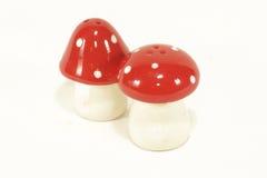 蘑菇形状的盐和胡椒 免版税库存图片