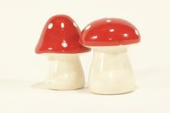 蘑菇形状的盐和胡椒 免版税图库摄影