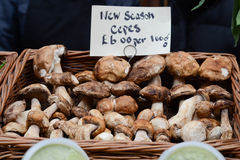 蘑菇待售在市场上 免版税库存照片