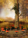 蘑菇树和圆环  免版税库存照片