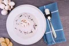 蘑菇汤新鲜的奶油在一个白色碗的 免版税库存照片