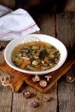 蘑菇汤用土豆、红萝卜、葱和鸡肉在老木背景 土气样式 免版税库存图片