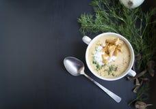 蘑菇汤用油煎方型小面包片 图库摄影