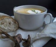 蘑菇汤用油煎方型小面包片 免版税图库摄影