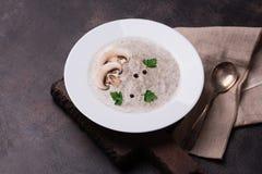 蘑菇汤用荷兰芹和真菌 免版税库存照片