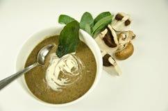 蘑菇汤 库存图片