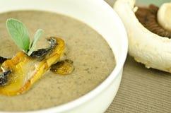 蘑菇汤 免版税库存照片