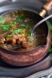 黄蘑菇汤 免版税图库摄影