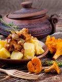 蘑菇用土豆 库存图片