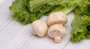 蘑菇用散叶莴苣 免版税库存图片